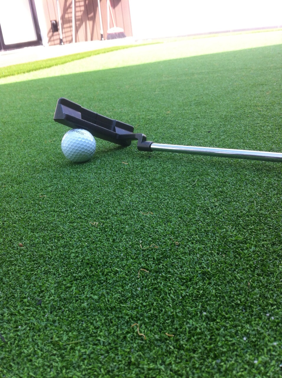 backyard golf greens a hit in hong kong